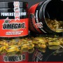omega-3-acides aminés essentiels-huile de saumon-santé